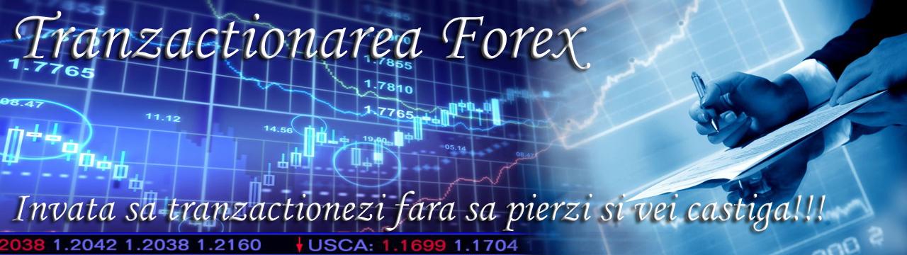 Ce trebuie sa stii pentru a tranzactiona pe Forex?